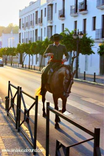 Man riding horse- Andalucía Bound