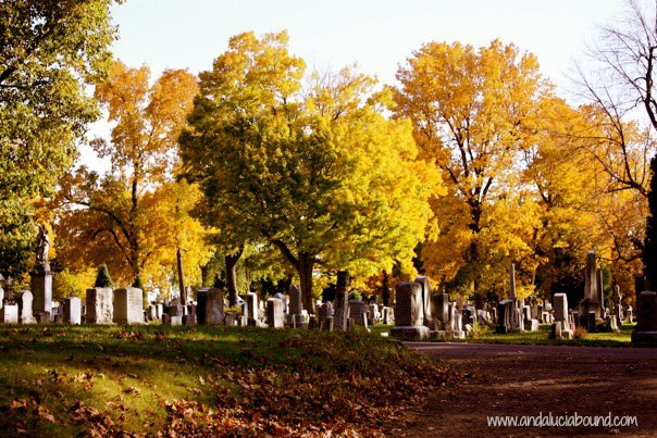 Fall Yellow Cemetery