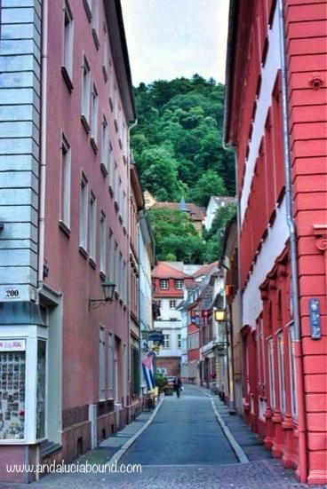 Heidelberg Alley- Andalucía Bound